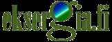 Eksergia.fi -logo